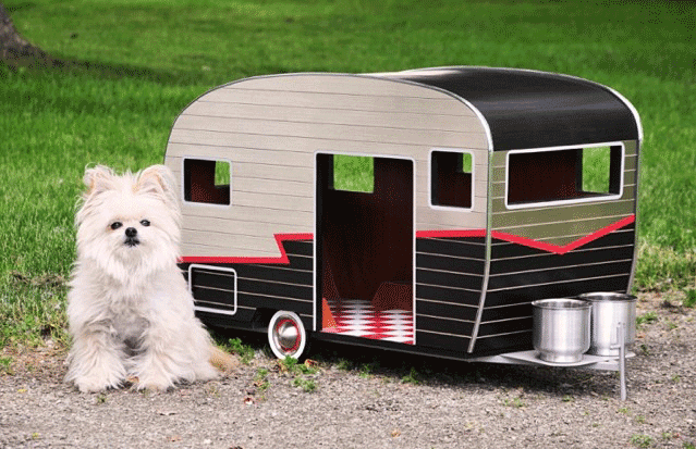 Design Milk Vansage Campervan life with dogs