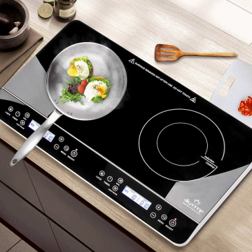 Duxtop two burner vansage Best portable induction cookers