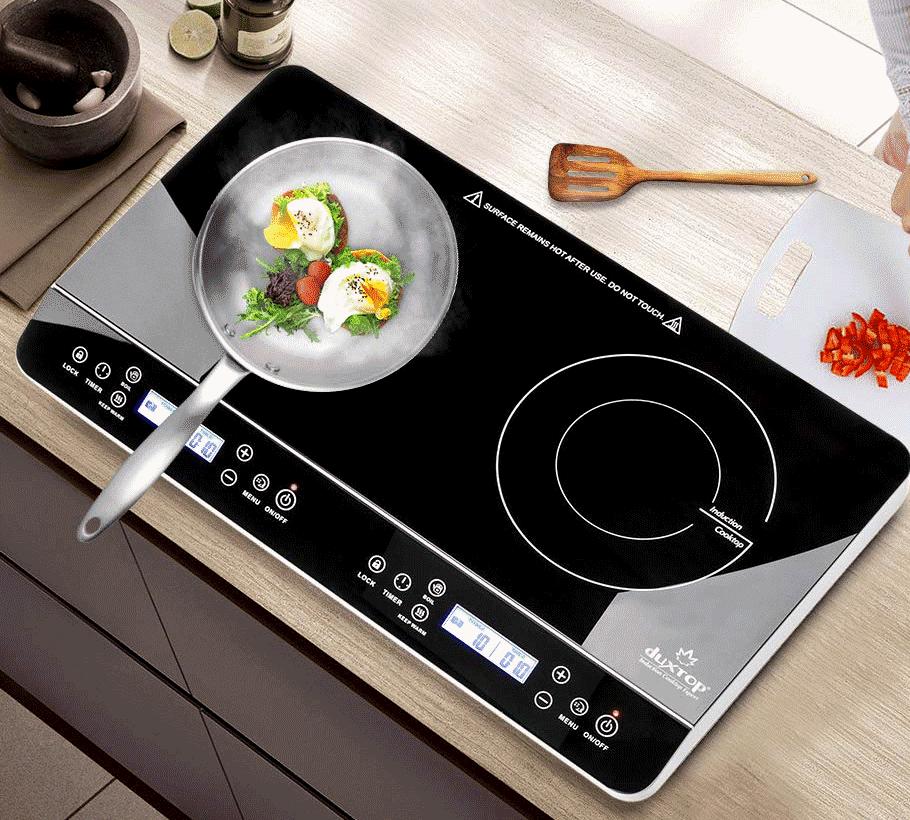 Duxtop two burner vansage Best portable induction cookers
