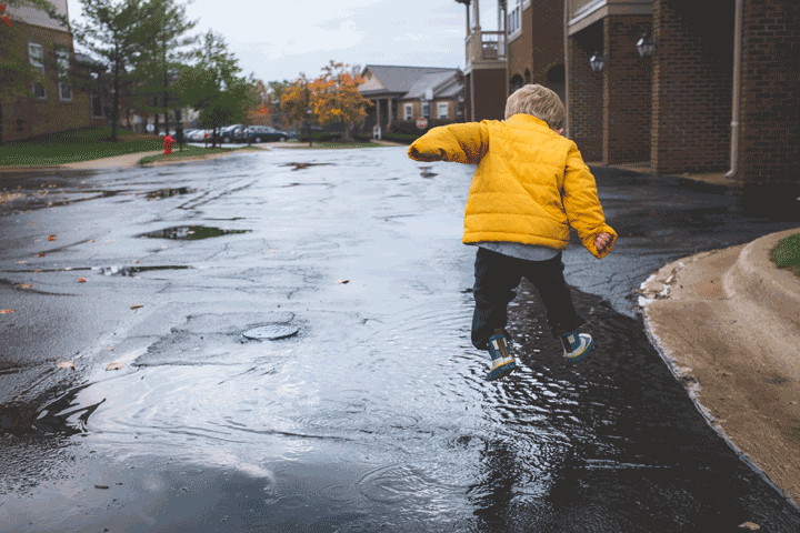Survive vanlife Rain days vansage
